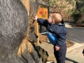 Akron Zoo Toddler by Bear