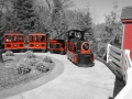 Train in Red and Black Akron Zoo