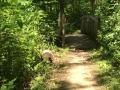 Hiking Trails Beech Creek Gardens
