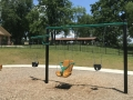 Infant and Accessable Swings