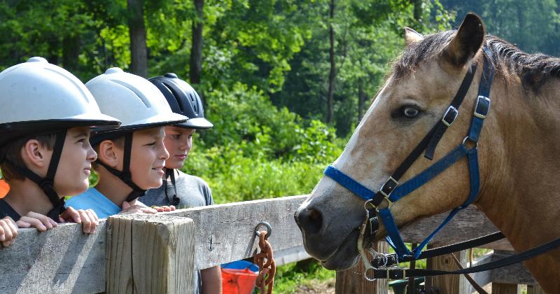 Horseback Riding Summer Camp Fitch YMCA