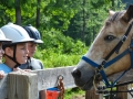 Horseback Riding Summer Camp Fitch YMCA