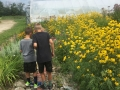 Gardening at Summer Camp Crown Point Ecology Center
