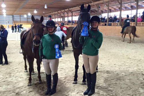 Horseback Riding Lessons Oberlin Ohio Equestrian Elite