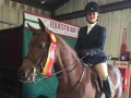 Riding Lessons for Kids and Adults Equestrian Elite Ohio