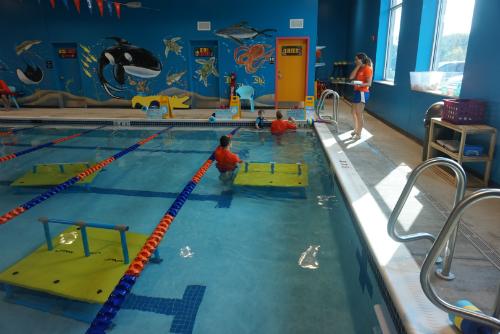 Swimming Lane Goldfish