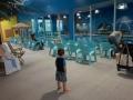 Inside of Goldfish Swim School