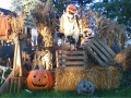 Walk through Halloween Display Ohio