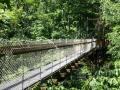 Holden Arboretum Ohio Canopy Walk