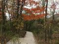 Jackson-Bog-State-Nature-Preserve-5
