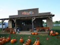 kingsway-pumpkin-farm-02-png