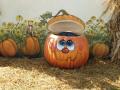 kingsway-pumpkin-farm-png
