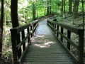 Cuyahoga-Valley-National-Park-Ledges-Trail-2