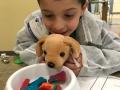 Veterinarian Camp for Kids Ohio