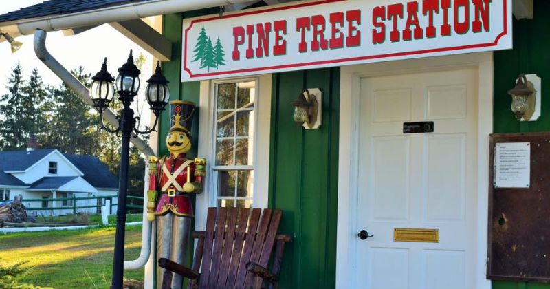 Medina Christmas Tree Farm Pine Tree Station