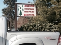 Cut Your Own Christmas Tree in Medina Ohio