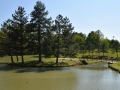 Large Fishing Lake North Royalton Memorial Park Ohio