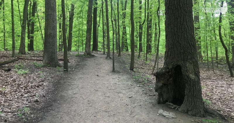 ONeil-Woods-Metro-Park-Ohio-10