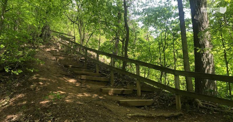 ONeil-Woods-Metro-Park-Ohio-5