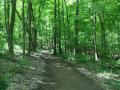 ONeil-Woods-Metro-Park-Ohio-4