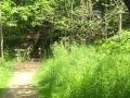 ONeil-Woods-Metro-Park-Ohio-7