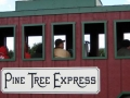 Ride the Pine Tree Express Pine Tree Barn