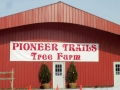 pioneer_trails_tree_fram_cut_your_own_trees_in_polond_ohio
