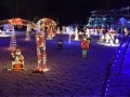 Rambacher-Family-Christmas-Display-6