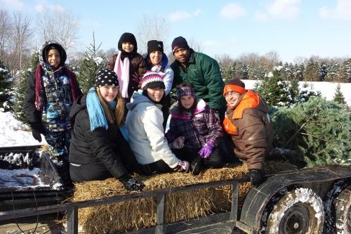 cut your own christmas tree farm ohio - Christmas Tree Farms In Ohio