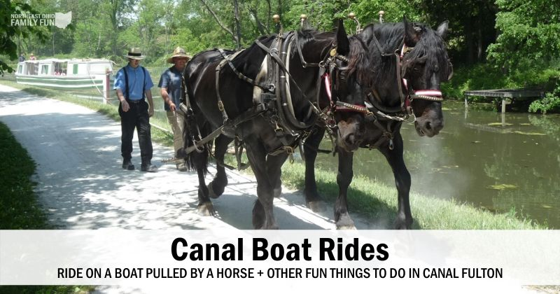 Ride on a Canal Boat Pulled by a Horse – The Canalway Center
