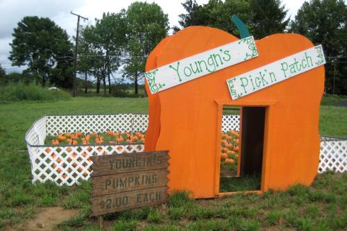 nickajack farms fall festival review and ticket giveaway