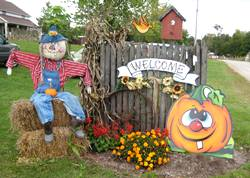 Tips for Planning a Trip to a Farm Fall Festival