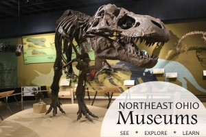 100 Things To Do In Northeast Ohio This Winter: dinosaur museum ohio