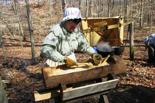 Early Settlers making Maple Sugar