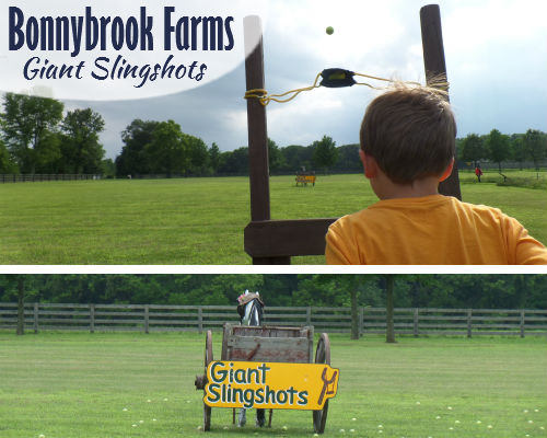 Giant Slingshots at Bonnybrook Farms