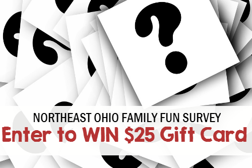 Complete Northeast Ohio Family Fun Survey Enter to Win a $25 Target Gift Card!