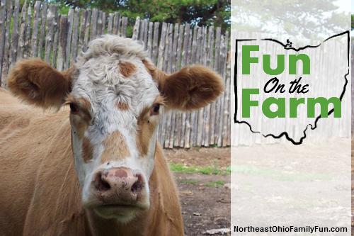 Northeast Ohio Farms