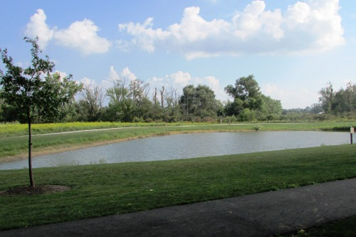 Pond at Schneider Community Park Plain Township Ohio