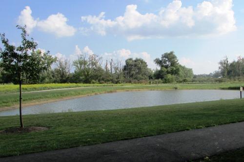 Pond at Schneider Community Park Plain Township Ohio