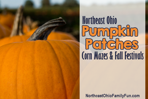 Northeast Ohio Pumpkin Patches Corn Mazes Fall Festivals