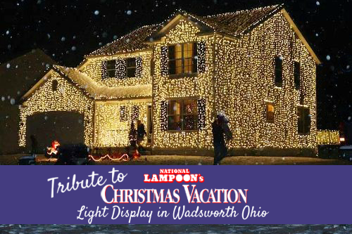 Tribute to National Lampoon's Christmas Vacation Light Display