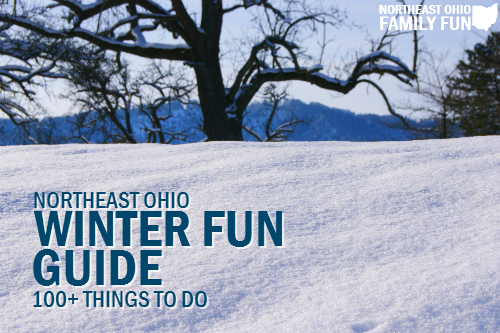 100 Things to Do Winter Ohio