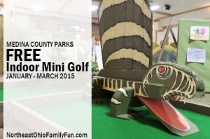 Medina County Parks Indoor Mini Golf Course Ohio