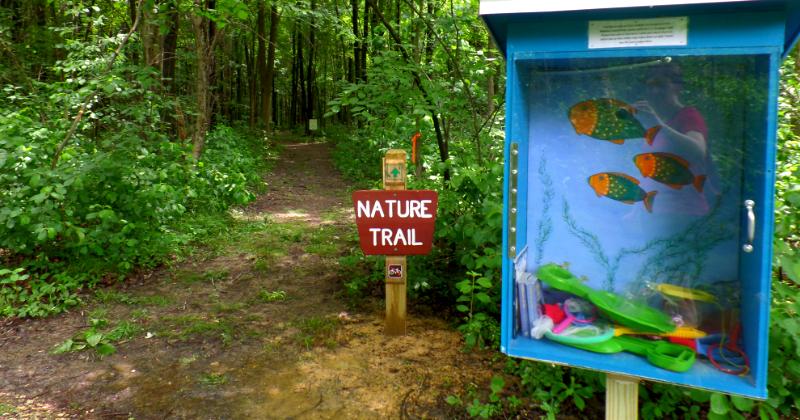 Nature Trails Carolyn Ludwig Mugrage Park Medina