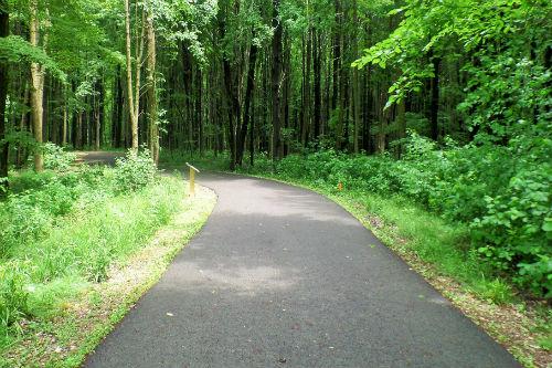 Story Walk Trail Medina Parks