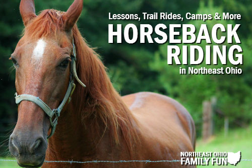 Horseback riding in northeast ohio for Places to go horseback riding near me