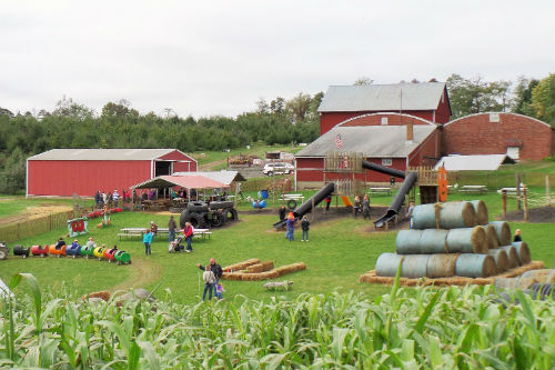 Review: Fall Festival at Arrowhead Orchard
