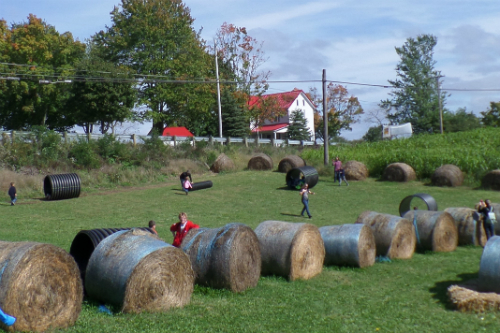 Fall Festival Fun at Arrowhead Orchards