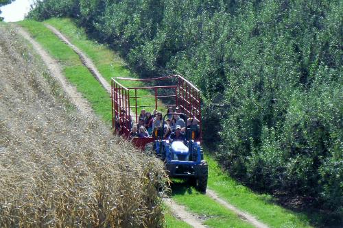 Hayrides at Arrowhead Orchards Ohio