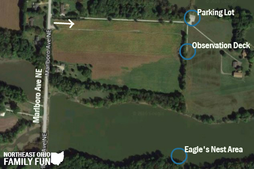 Location of Bald Eagles Nest at Walborn Reservoir Ohio